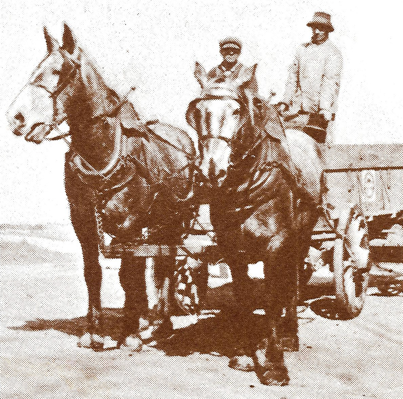 turn of the century horse drawn delivery cart